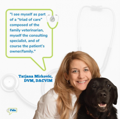 Allies in Internal Medicine Veterinary Teleconsult Services